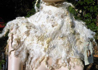 geschmeidiger großer Kragen, weit oder eng zu tragen, ufwändig mit zweifarbigen Locken belegt, innen natürlich Alpaka; 99 €